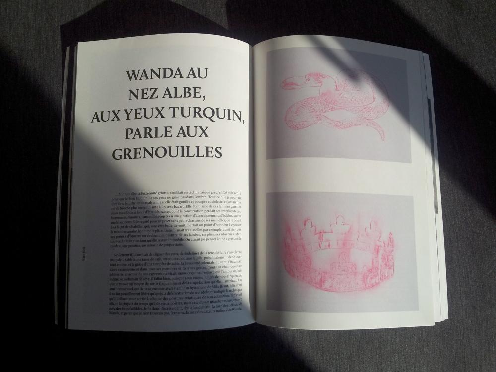 « Wanda au nez albe, aux yeux turquin, parle aux grenouilles », Revue Edwarda, n°11, mai 2014